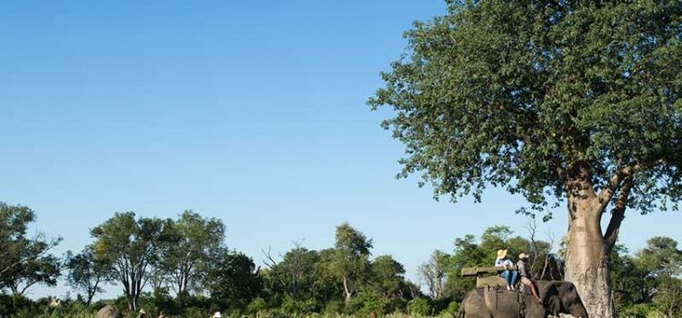 10 Facts about Botswana