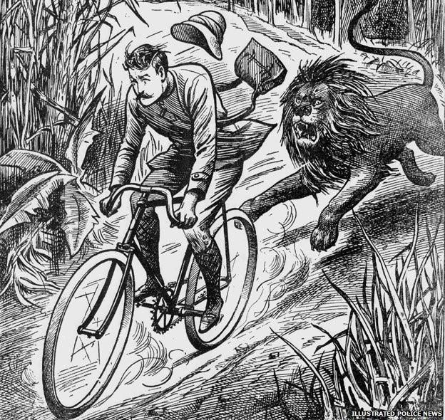 LIon and cyclist