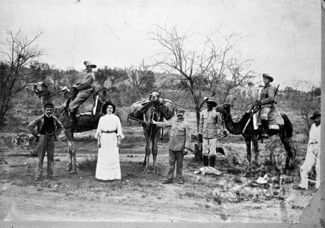 Camels in Tsumeb circa 1907
