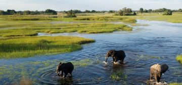 Belmond's 6 night Botswana  in Luxury